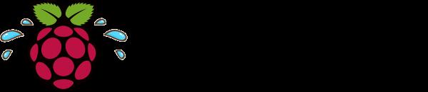 stressberry logo
